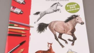 Lekcje rysowania. Konie