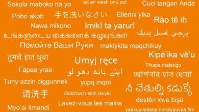 Photo of Tłumacze Biblii w służbie niesienia pilnych informacji zdrowotnych małym grupom językowym