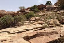 Photo of Inf. z Somalilandu: Aresztowanie za szerzenie chrześcijaństwa